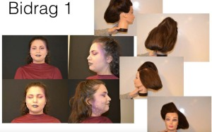 Agnes Hultgren, Stylist 14 - Plusgymnasiet orebro