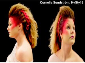 Cornelia Sundstrom, HvSty15 - Plusgymnasiet Norrkoping